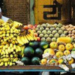 La foodtech face au défi de la faim dans le monde